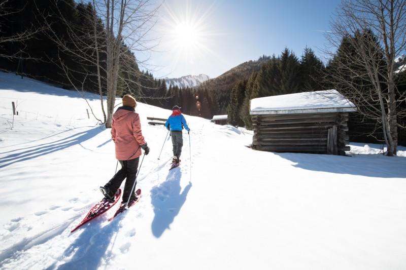 Winter trails, snowshoeing