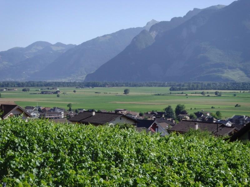 Le Sentier Vionnaz-Les Vignes
